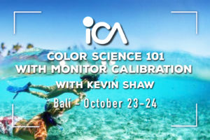 Bali: Color Science 101